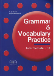 Grammar & Vocabulary Practice